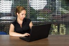 Lyckad affärskvinna som arbetar på bärbara datorn Royaltyfri Foto