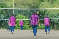 Lyckagrupp av tonårs- vänner som spelar volleyboll royaltyfri foto
