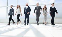 Lyckat affärslaganseende i kontorskorridoren royaltyfri bild