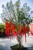 Lyckaträd Arkivbild