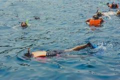 Lyckaturistsnorkel på den Similan ön arkivfoto