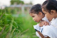 Lycklig asiatisk flicka för barn som två har roligt och spelar med naturen Arkivbilder