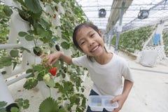 Lycklig asiatisk flicka med hennes jordgubbar Royaltyfria Foton
