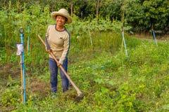 Lycklig asiatisk kvinna som ser kameran i trädgården royaltyfria foton