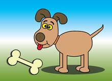 lycklig benhund Royaltyfria Foton