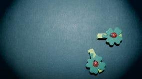 Lycklig berlock för nyckelpigor Arkivfoto