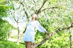 Lycklig blond kvinna på en bakgrund av att blomma vårträdgården med hennes händer som lyfts till himlen royaltyfria foton