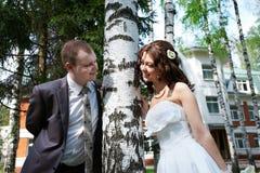 Lycklig brud och brudgum nära björk Arkivfoto