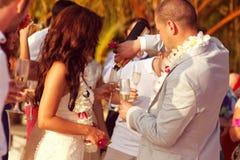 Lycklig brud och brudgum på deras bröllopdag Arkivfoto