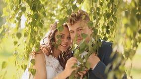 Lycklig brud och brudgum som döljer tillsammans under filialerna av en björk stock video
