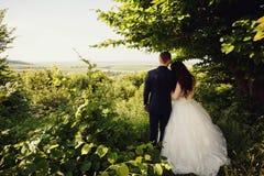 Lycklig brud och brudgum som går i sommarskogen Arkivbild