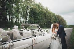Lycklig brud och brudgum som poserar efter bröllopceremoni royaltyfri bild