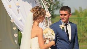 Lycklig brud- och brudgumdrinkchampagne på deras bröllopberöm lager videofilmer
