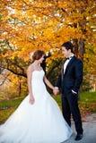 lycklig brudbrudgum Fotografering för Bildbyråer
