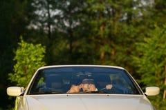lycklig brudbrudgum Arkivbild