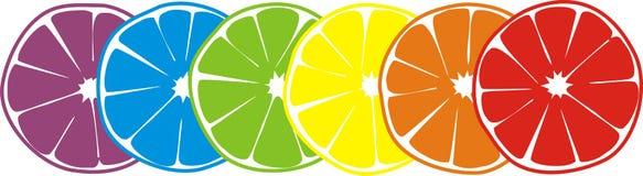 lycklig citrus stock illustrationer