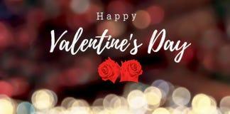 Lycklig dag för valentin` s med två härliga röda rosor Arkivfoton