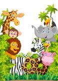 Lycklig djur zoo för tecknad filmsamling vektor illustrationer