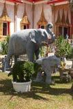 lycklig elefant Royaltyfri Bild