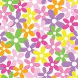 Lycklig färgrik blommabakgrund Fotografering för Bildbyråer
