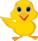 Lycklig fågelungetecknad film stock illustrationer