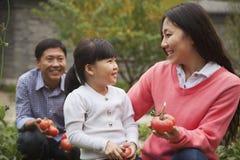 Lycklig familj i trädgård Arkivfoton