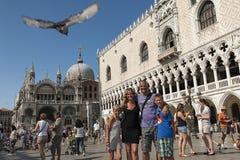 Lycklig familj i Venedig, Italien Arkivbild