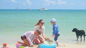 Lycklig familj med barn och hunden som spelar på den sandiga stranden med leksaker Tropisk ö, på en varm dag Royaltyfri Fotografi