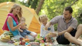 Lycklig familj på picknick lager videofilmer