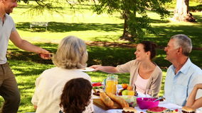 Lycklig familj som har en grillfest i parkera tillsammans stock video