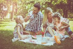 Lycklig familj som tillsammans tycker om i picknick Familj i äng Arkivbilder
