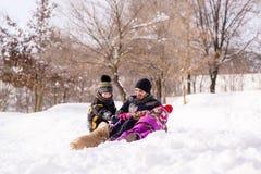 Lycklig familjlek med cockerspanieln utomhus Royaltyfri Bild