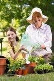 Lycklig farmor med hennes arbeta i trädgården för sondotter Royaltyfri Foto