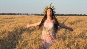 Lycklig flickadans på guld- vetefält och rörande mogna öron lager videofilmer