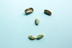 Lycklig framsida som göras från jordnötter Arkivfoto