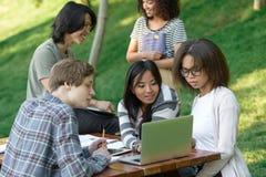 Lycklig grupp av unga studenter som sitter och studerar royaltyfri bild