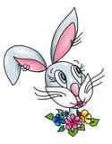 lycklig harekanin för kanin Royaltyfri Fotografi