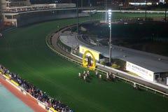 lycklig Hong Kong racecoursedal Arkivbilder