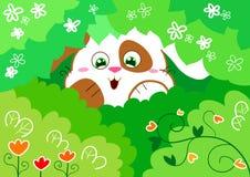 lycklig kanin Fotografering för Bildbyråer