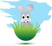 lycklig kanin Arkivfoton