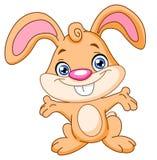 lycklig kanin
