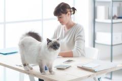 Lycklig katt på ett skrivbord fotografering för bildbyråer