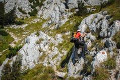 Lycklig klättring för ung man royaltyfri bild