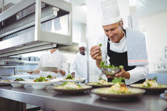 Lycklig kock som garnerar aptitretareplattor på beställningsstationen Royaltyfri Fotografi