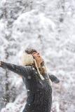 Lycklig kvinna på fallande snö med öppna armar Fotografering för Bildbyråer