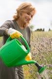 Lycklig kvinna som bevattnar växter arkivfoton