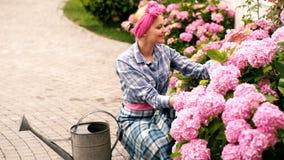 Lycklig kvinna som tar omsorg av blommor i trädgård Att bevattna blommar i trädgårds- mitt hydrangea Vår och sommar stock video