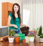 Lycklig kvinna som transplanterar blommor Royaltyfri Fotografi