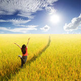 Lycklig kvinnabanhoppning i gul risfält och solhimmel Royaltyfri Bild