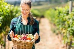 Lycklig kvinnlig bonde som rymmer en korg av grönsaker Fotografering för Bildbyråer